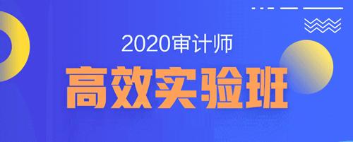 20年高效实验班-中华会计网初中级审计师辅导方案