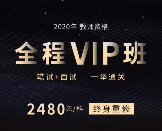 2020教师资格全程VIP班-环球网校